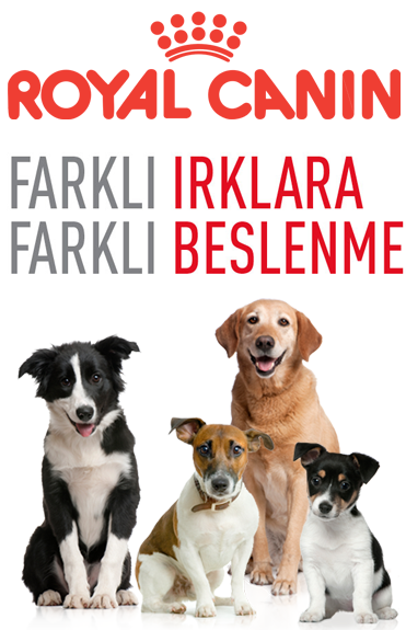 royal-canin-banner