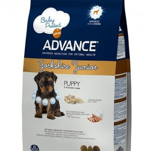 Advance Yorkshire Terrier  Junior Chicken & Rice Tavuklu Özel Içerikli Yavru Köpek Mamasi 1.5 Kg